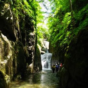 泙川三重泉沢 2010/6/12-13