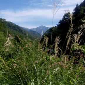 飯豊 長走沢赤抜ゲ沢~杉ノ沢下降 2012/9/15-17