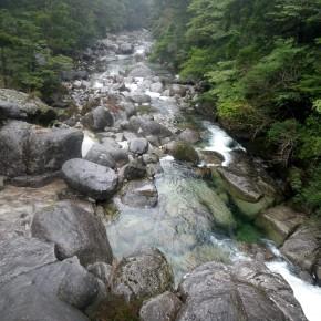 屋久島 淀川~ビャクシン沢遡行 2012/8/17-19
