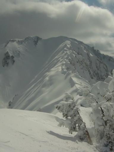 2/10 11:52 イワキ頭へつづく稜線上。北入りの頭を振り返る。