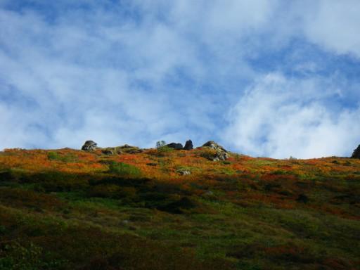 万太郎の稜線は色づく